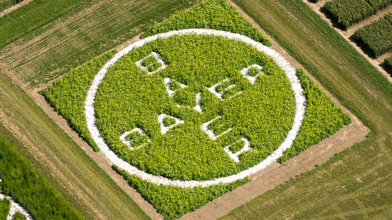 Bayer_Logo_Field