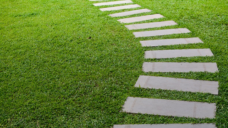 Pathway in the garden outdoor, forward stepping stones or pebbled in the grass lawn.