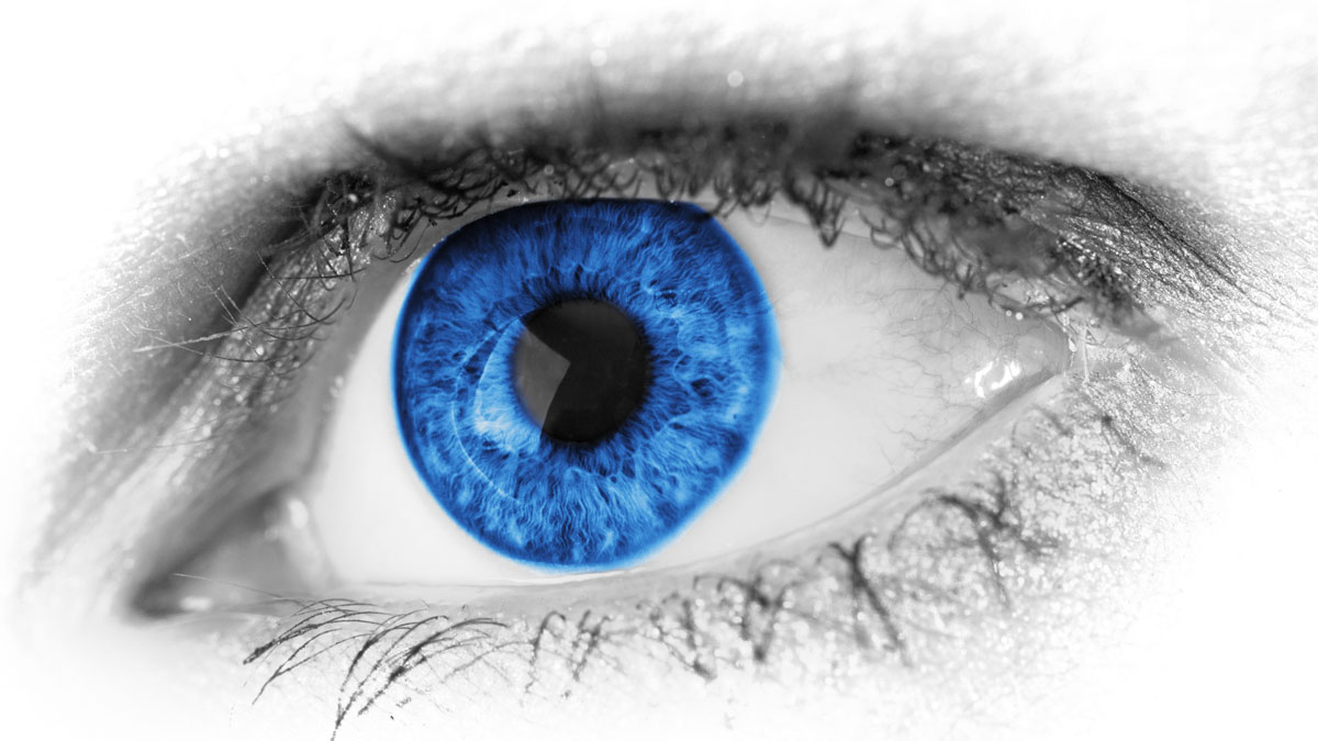 Blue eye detail