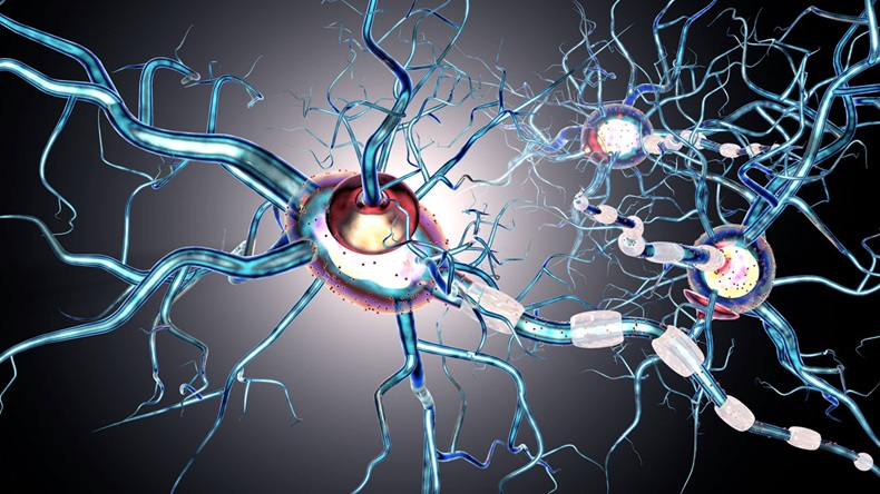 nerve cells, concept for neurodegenerative and neurological disease